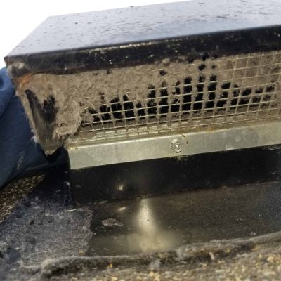 Dryer Roof Vent Cleaning